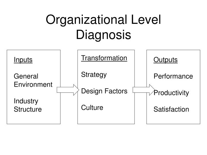Organizational Level Diagnosis