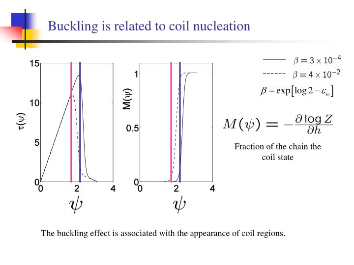 Buckling is related to coil nucleation