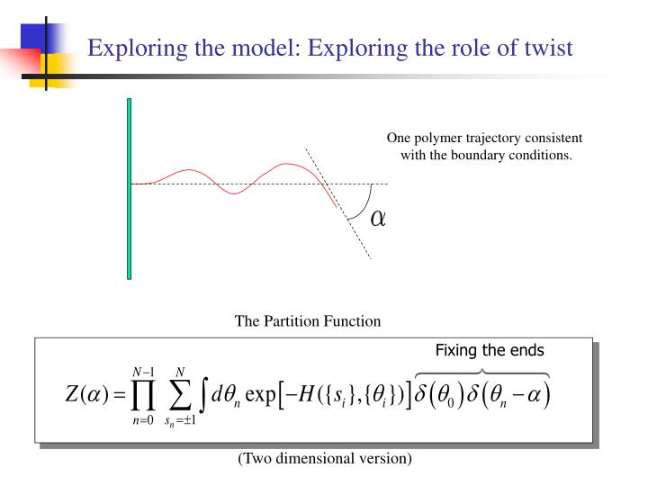 Exploring the model: Exploring the role of twist