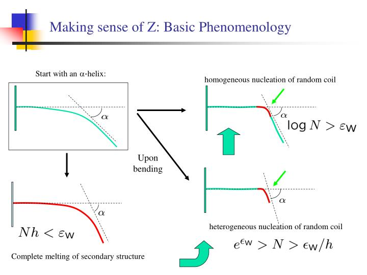 Making sense of Z: Basic Phenomenology