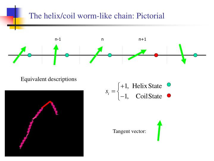 The helix/coil worm-like chain: Pictorial