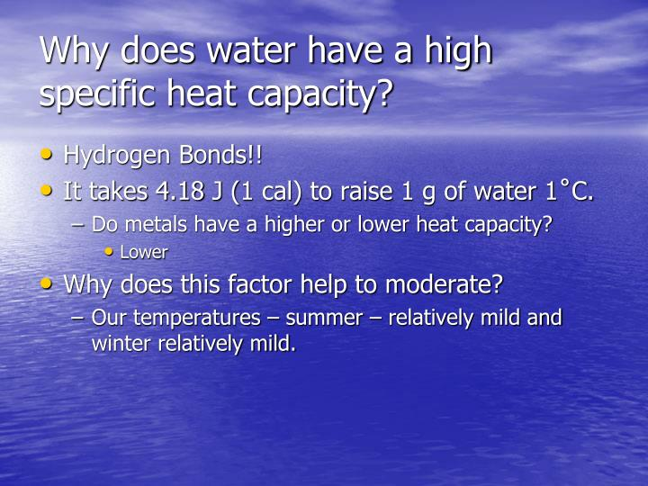 Why does water have a high specific heat capacity?