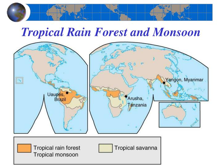 Tropical Rain Forest and Monsoon