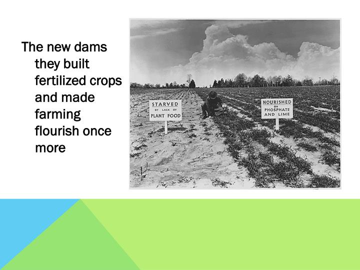 The new dams they built fertilized crops and made farming flourish once more