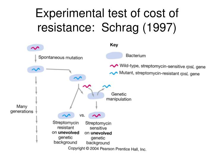 Experimental test of cost of resistance:  Schrag (1997)