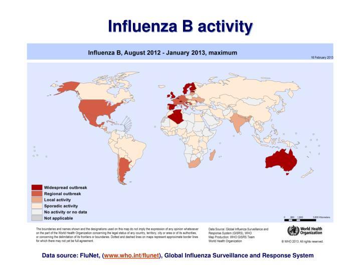 Influenza B activity