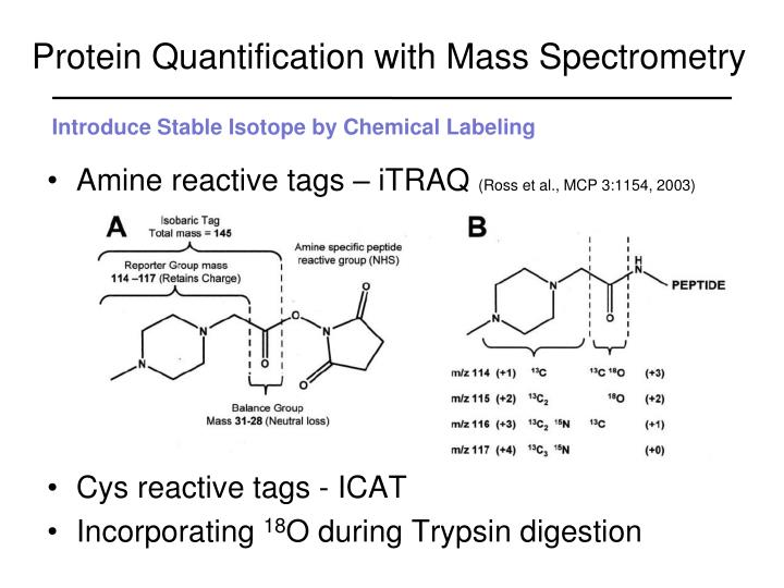 Protein Quantification with Mass Spectrometry