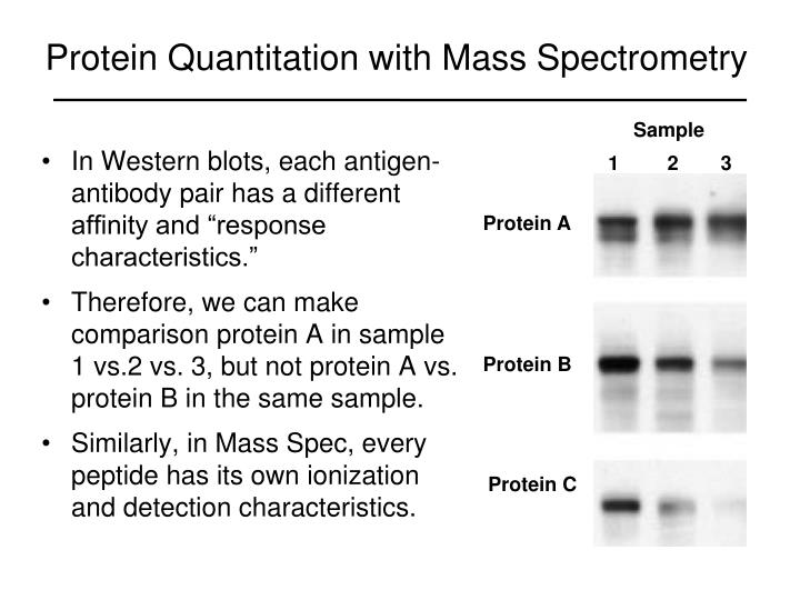 Protein Quantitation with Mass Spectrometry