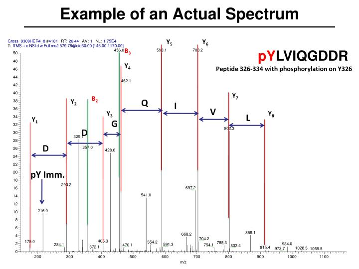 Example of an Actual Spectrum