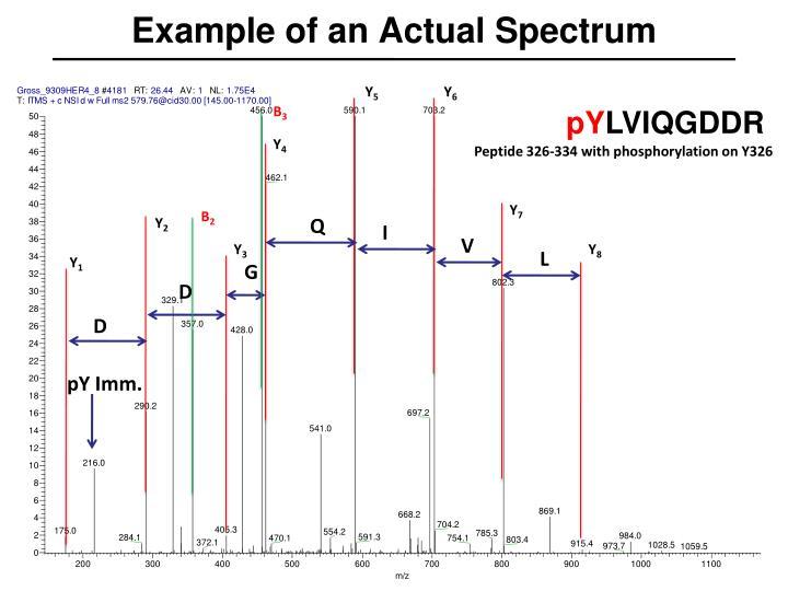 Example of an Actual Spectrum