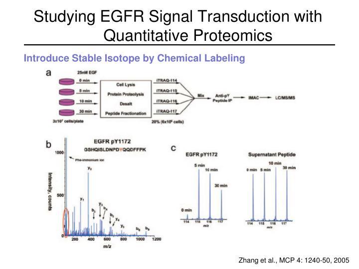 Studying EGFR Signal Transduction with Quantitative Proteomics