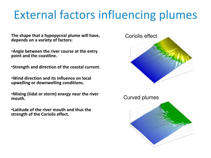 External factors influencing plumes