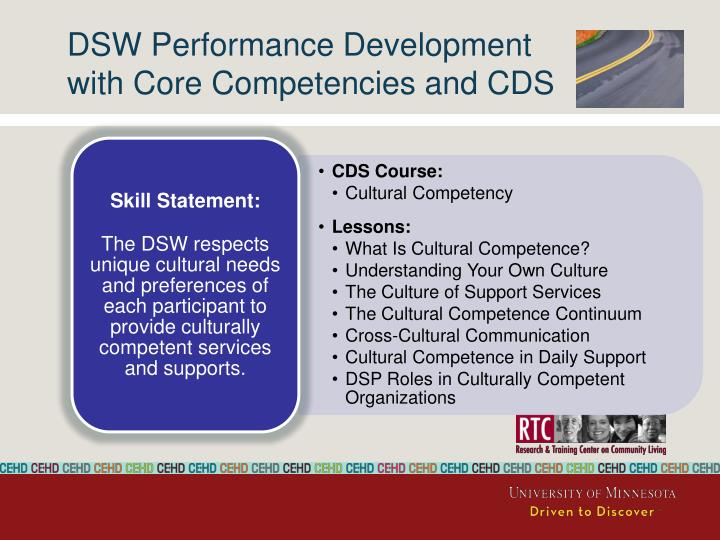 DSW Performance Development