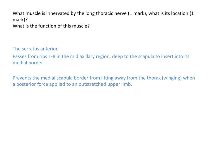 What muscle is innervated by the long thoracic nerve (1 mark), what is its location (1 mark)?