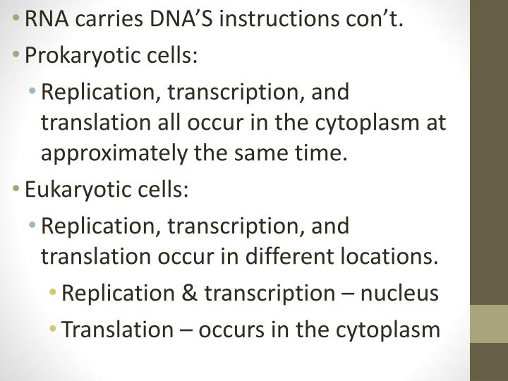 RNA carries DNA'S instructions