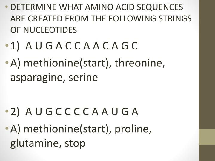 DETERMINE WHAT AMINO ACID SEQUENCES ARE CREATED FROM THE FOLLOWING STRINGS OF NUCLEOTIDES