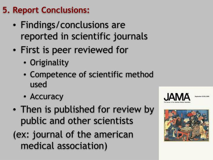 5. Report Conclusions: