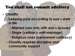 you shall not commit adultery1