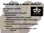 you shall not commit adultery2