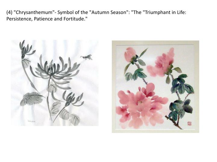 "(4) ""Chrysanthemum""- Symbol of the ""Autumn Season"": ""The ""Triumphant in Life: Persistence, Patience and Fortitude."""