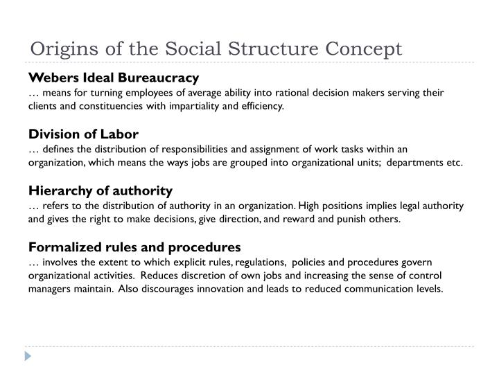 Origins of the Social Structure Concept