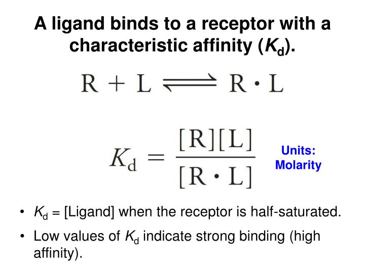 A ligand binds to a receptor with a characteristic affinity (