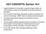 key concepts section 10 2