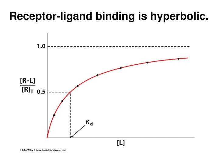 Receptor-ligand binding is hyperbolic.