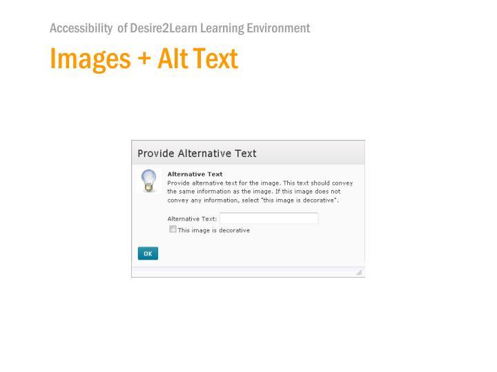 Images + Alt Text