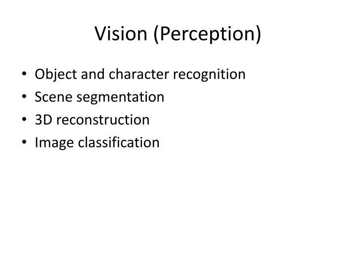 Vision (Perception)