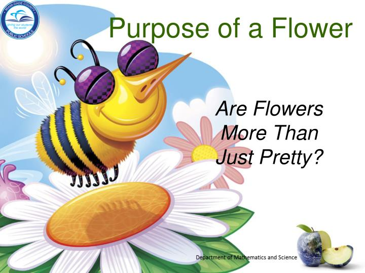 Purpose of a Flower