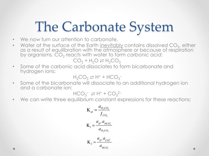 The Carbonate System