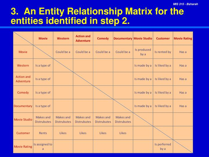 3.  An Entity Relationship Matrix for the entities identified in step 2.