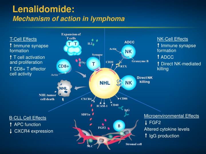 Lenalidomide