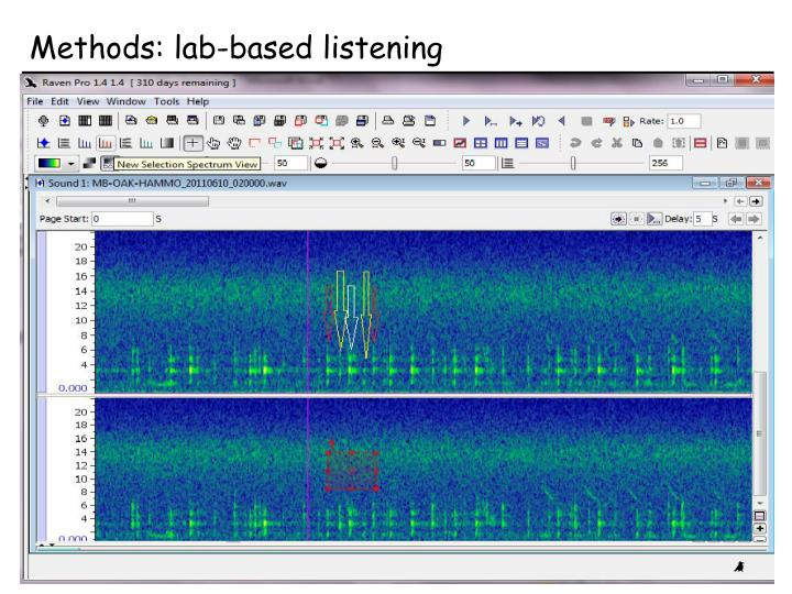 Methods: lab-based listening