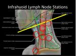 infrahyoid lymph node stations