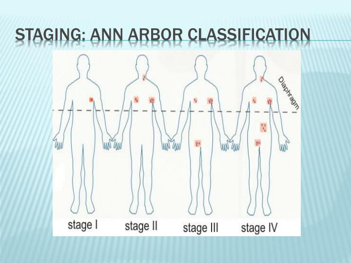 Staging: Ann Arbor classification