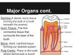 major organs cont
