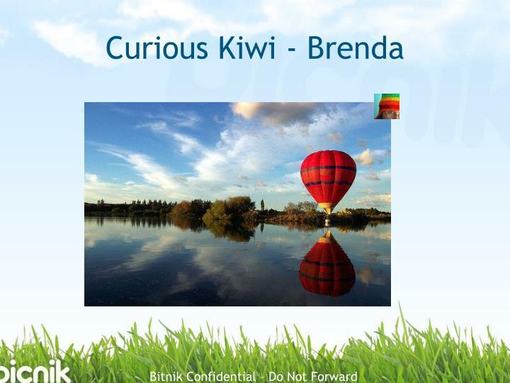 Curious Kiwi - Brenda