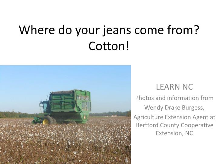 Where do your jeans come from cotton
