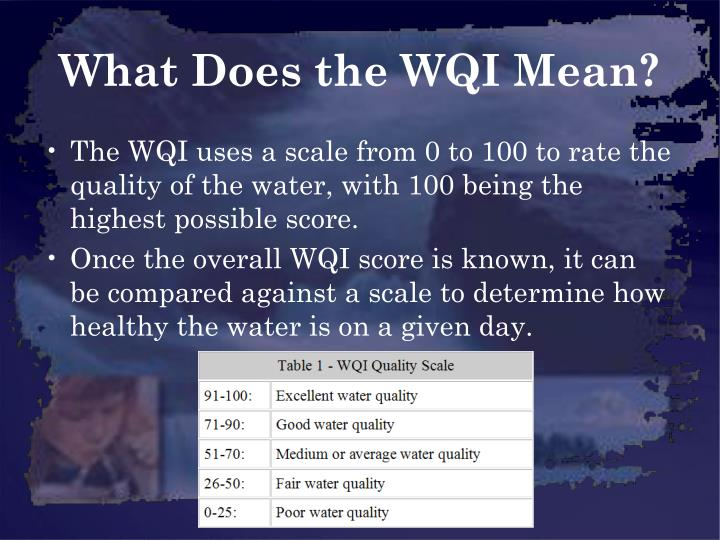 What Does the WQI Mean?