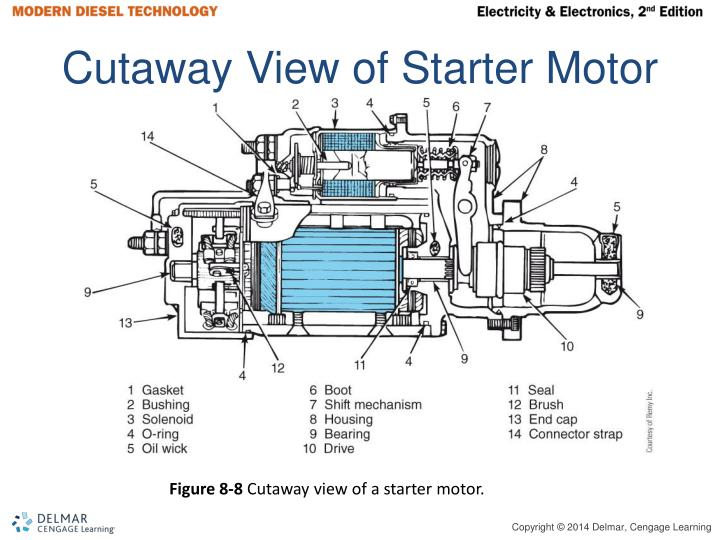Cutaway View of Starter Motor