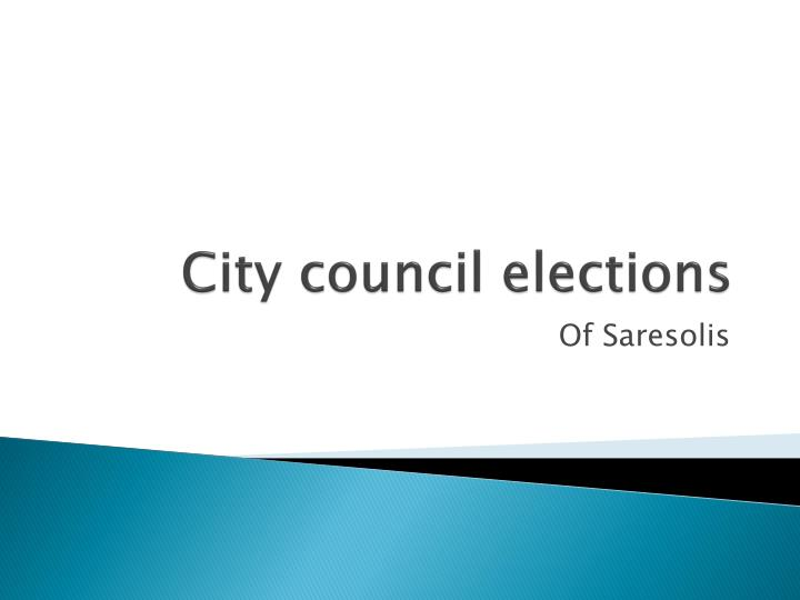 City council elections