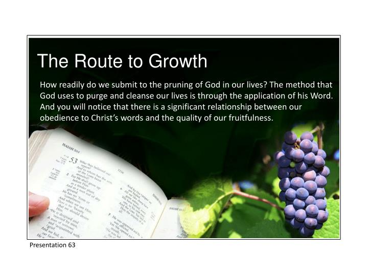 The Route to Growth