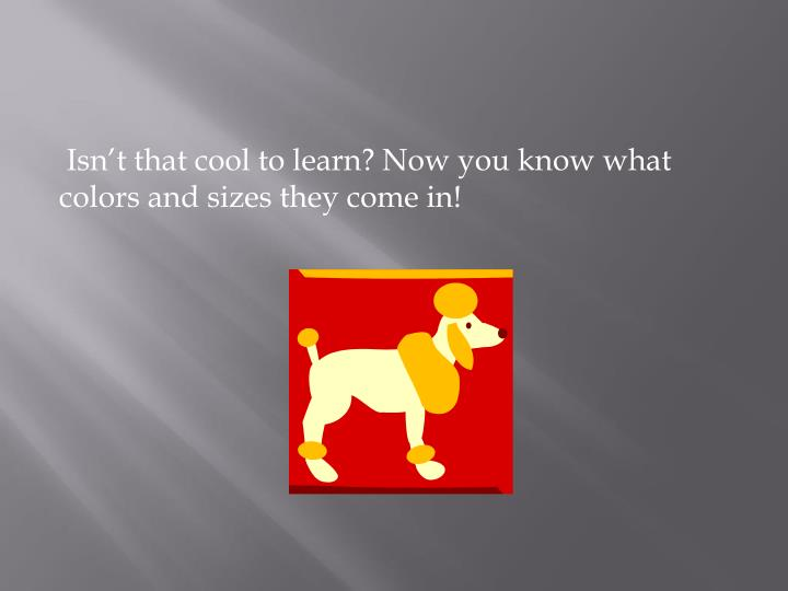 Isn't that cool to learn? Now you know what colors and sizes they come in!