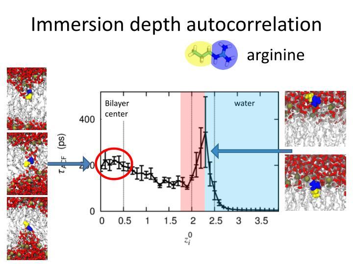 Immersion depth autocorrelation