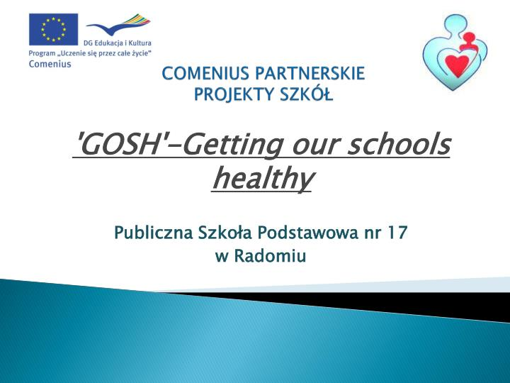 Comenius partnerskie projekty szk