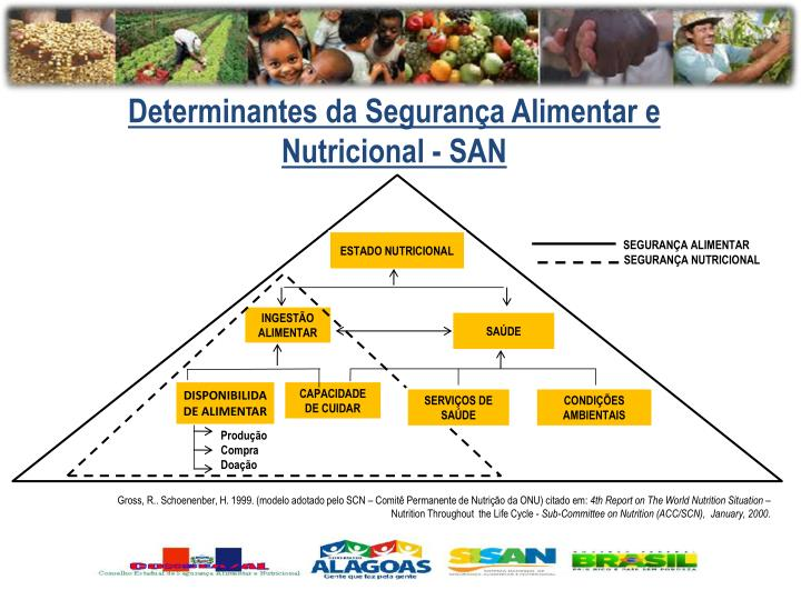 Determinantes da Segurança Alimentar e