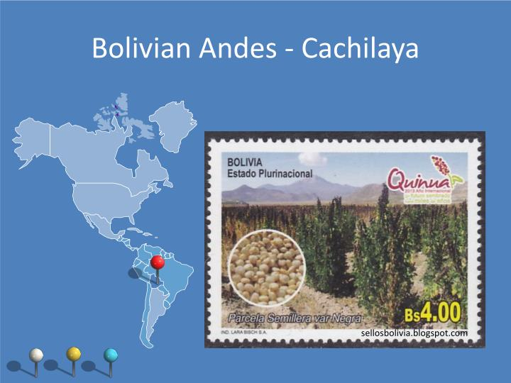 Bolivian Andes - Cachilaya