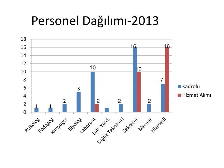 Personel Dağılımı-2013